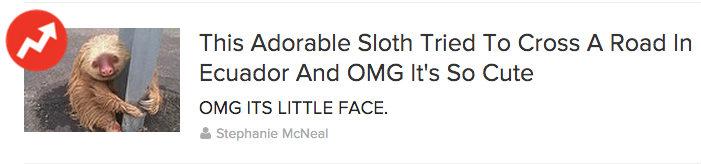 sloth-buzzfeed