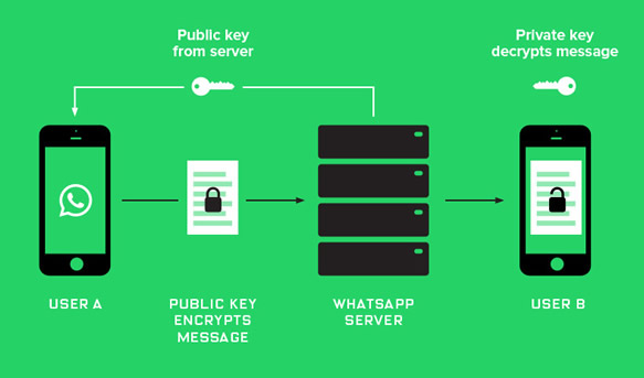 WhatsappEncryption