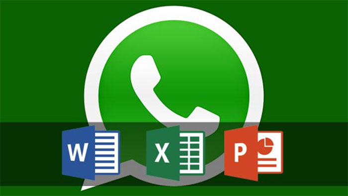 whatsapp-word-excel