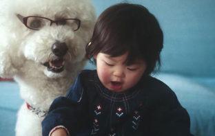 Beck apoya la protección animal con su nuevo vídeo: 'Fix Me'
