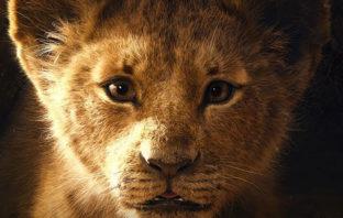 Primer vistazo a la nueva versión de 'The Lion King'