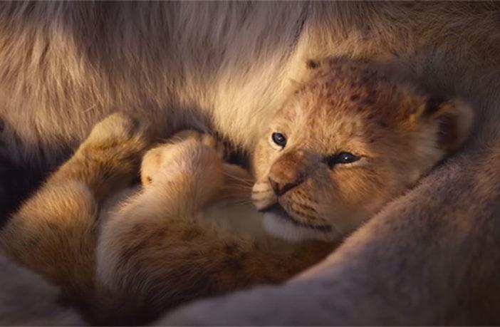 'El Rey León': tráiler revela canción de Simba y Nala en voces de Beyoncé y Donald Glover