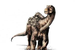 Yamanasaurus lojaensis, el primer dinosaurio descubierto en Ecuador