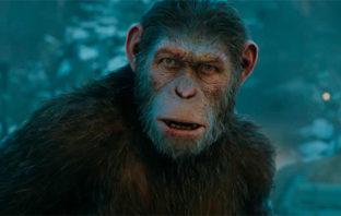Disney prepara una nueva película del 'Planeta de los Simios'