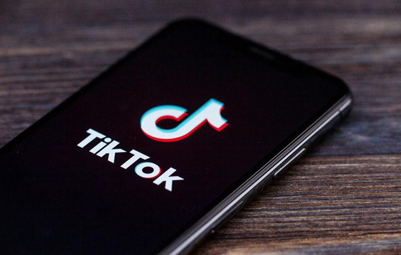 """EL CEO de Reddit  calificó de """"Parásito"""" a TikTok"""
